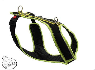 BRACCO dog harness ACTIVE, black/yellow - various sizes.