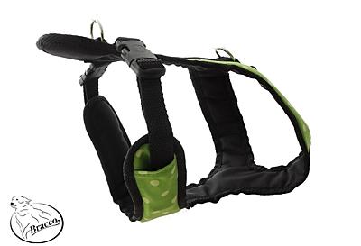 BRACCO postroj pro psa ACTIVE , zelená/puntík- různé velikosti.